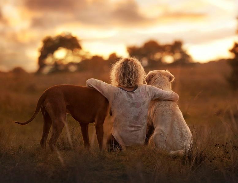 дружба девочка и собаки