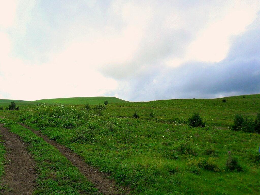 Дорога на плато ...SAM_0799.JPG
