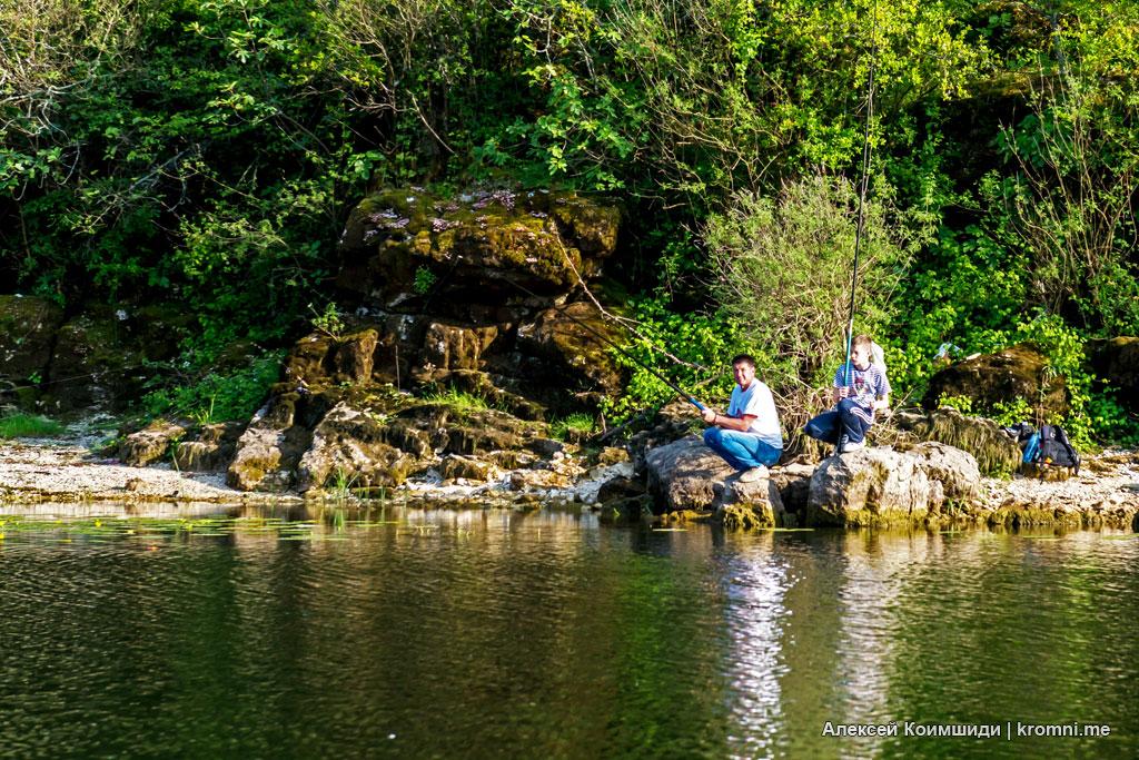 По реке Црноевича