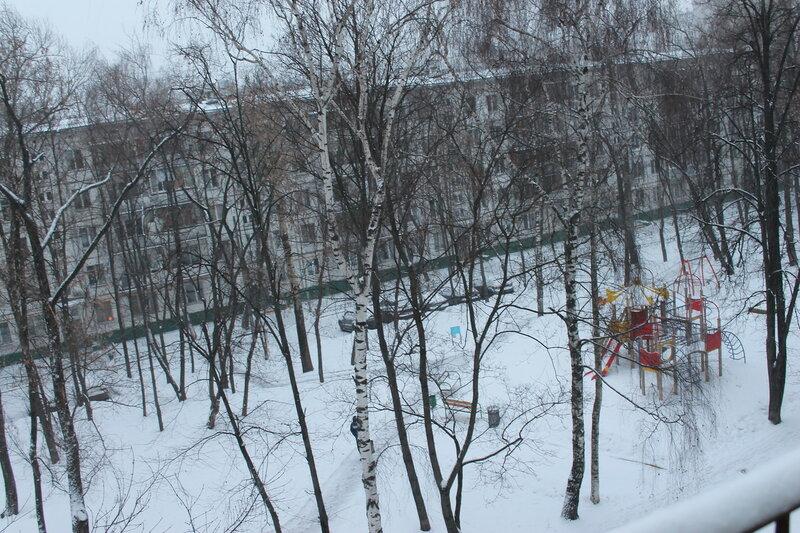 Мороз все планы испортил IMG_1762.JPG