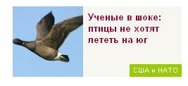 0_13864d_6fde1dc1_orig Шок и Десять самых богатых россиян (фото)
