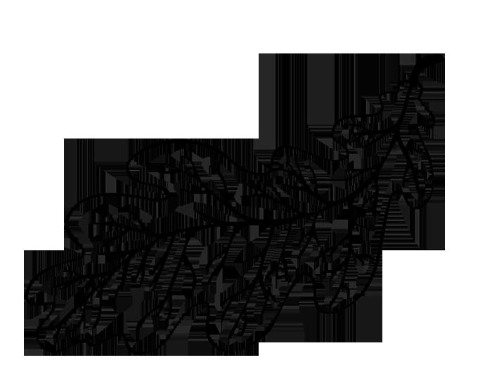 картинка контур дубового листа