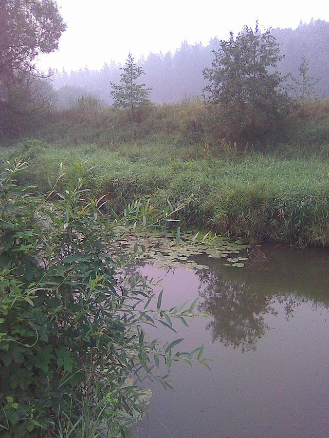 Река Большая Сестра