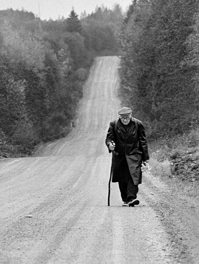 В пути. Окрестности Тарту