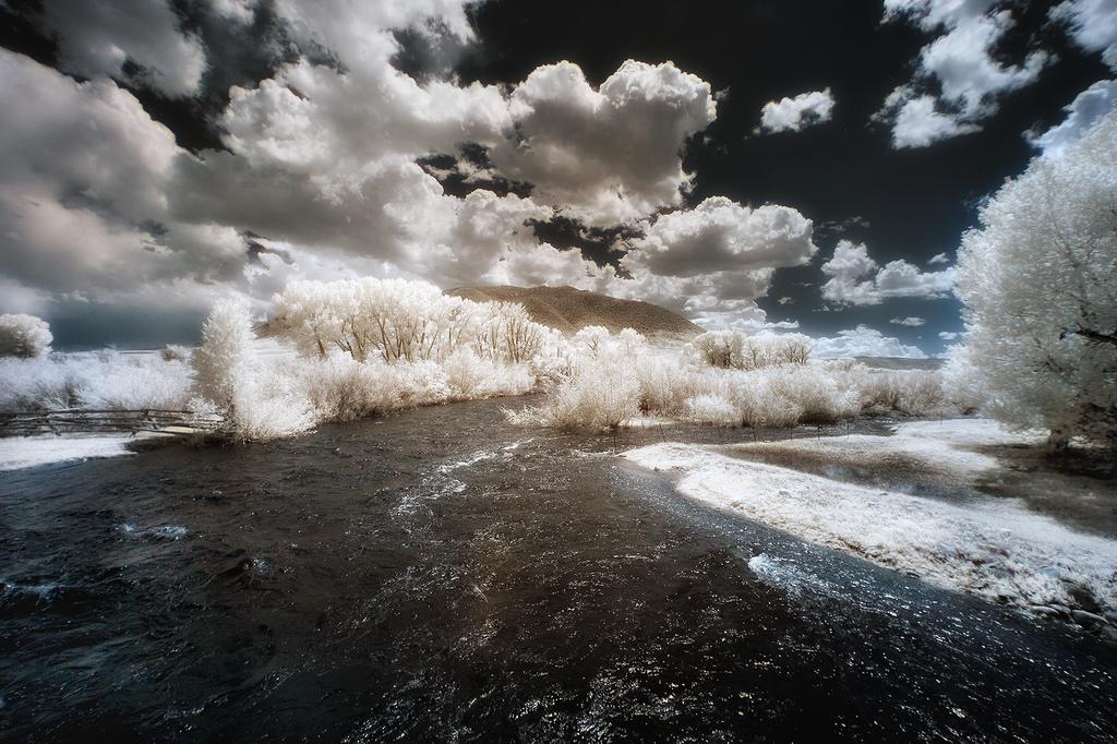 Winterized, Greg Westfall0.jpg