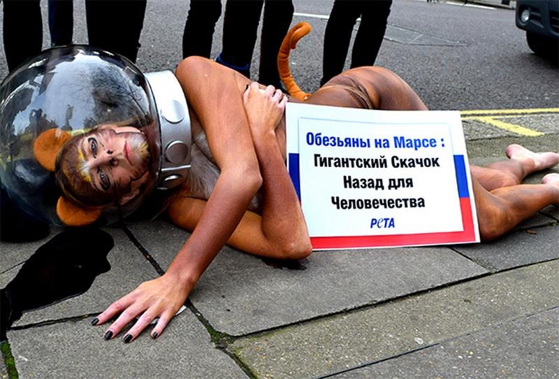 Порноактриса из «Игры престолов» разделась, протестуя против отправки российских обезьян на Марс