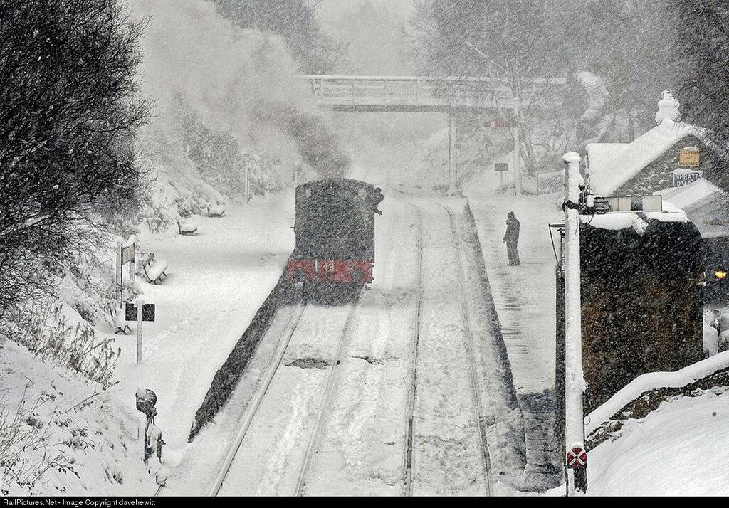 Locomotive #49 Steam 0-6-0, Tanfield Railway, Gibraltar bridge, Gateshead, United Kingdom, December 06, 2010