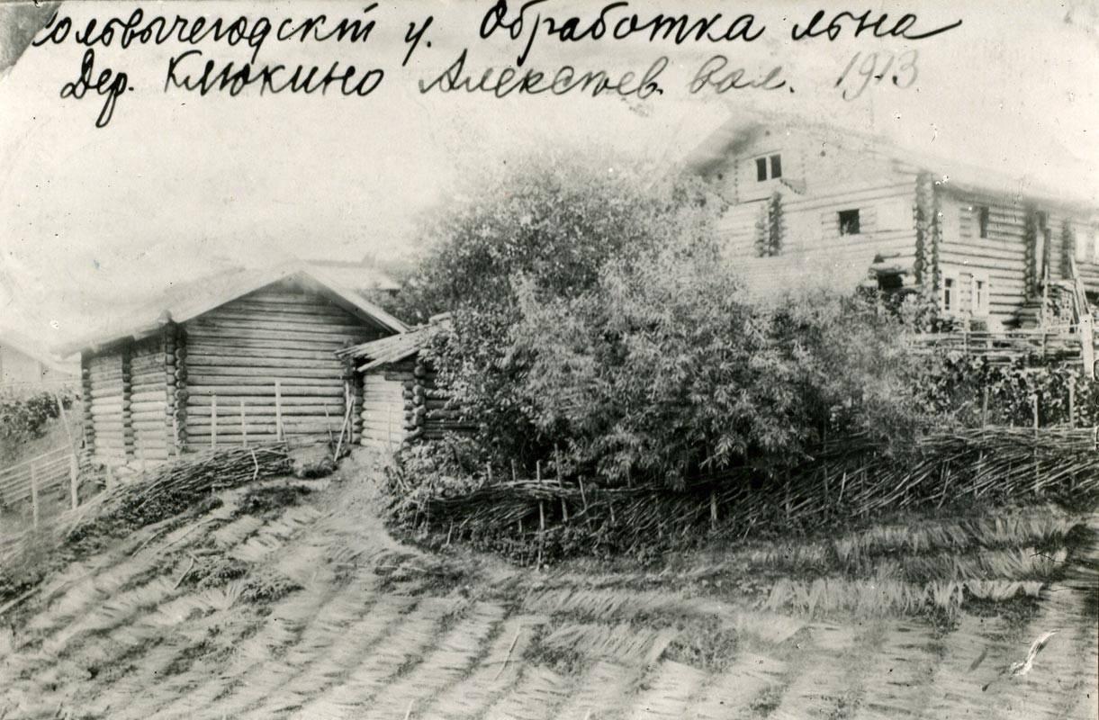 Окрестности Сольвычегодска. Сушка льна в деревне Клюкино