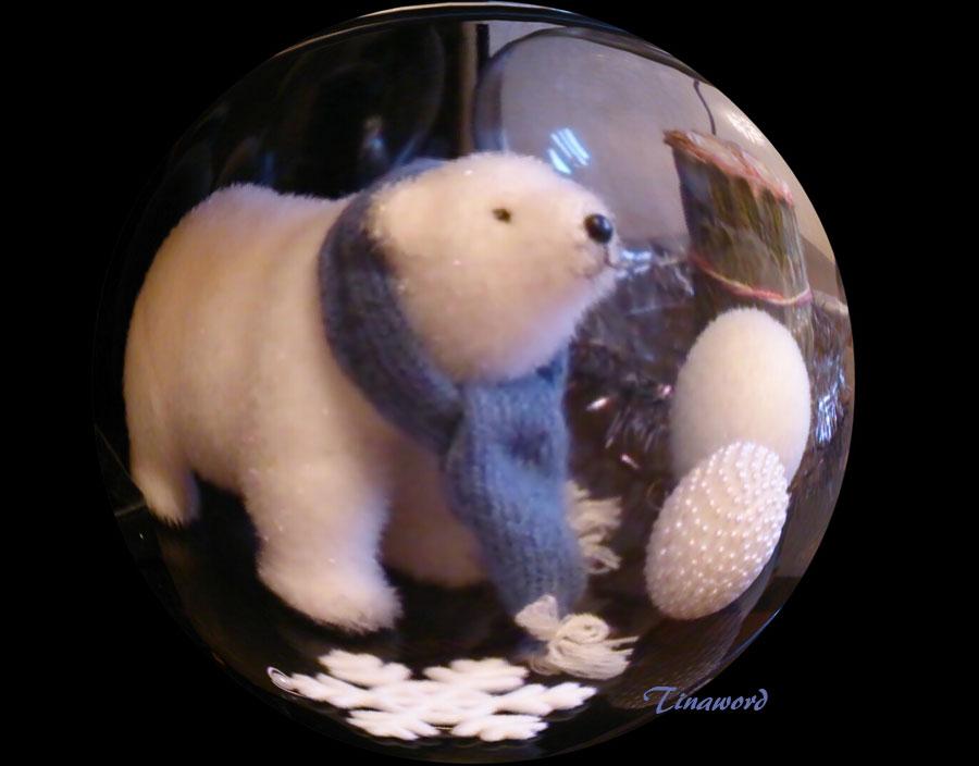 белый-медведь-3.jpg