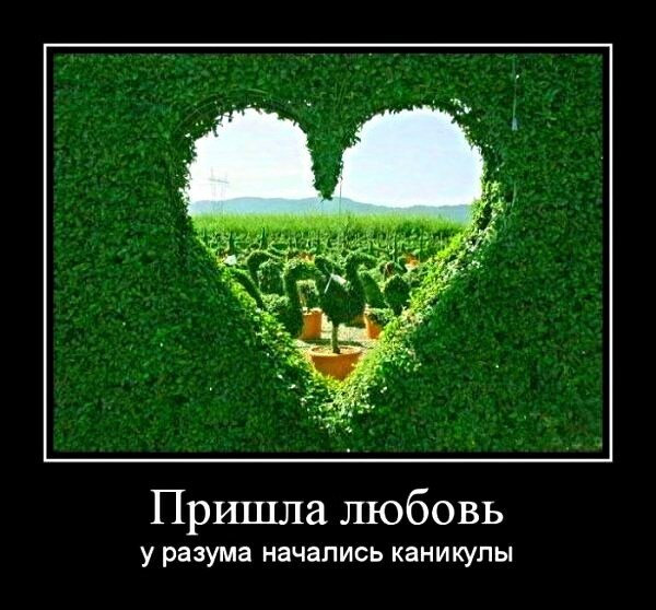 1360832907_love_dem_47.jpg