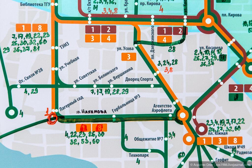 показаны маршруты трамвая,