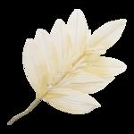 martad_WhiteForest_el(18).png