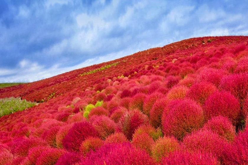 Невероятные фотографии природы, сделанные без использования Photoshop 0 1432e0 90946f07 orig