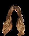 hair41.png