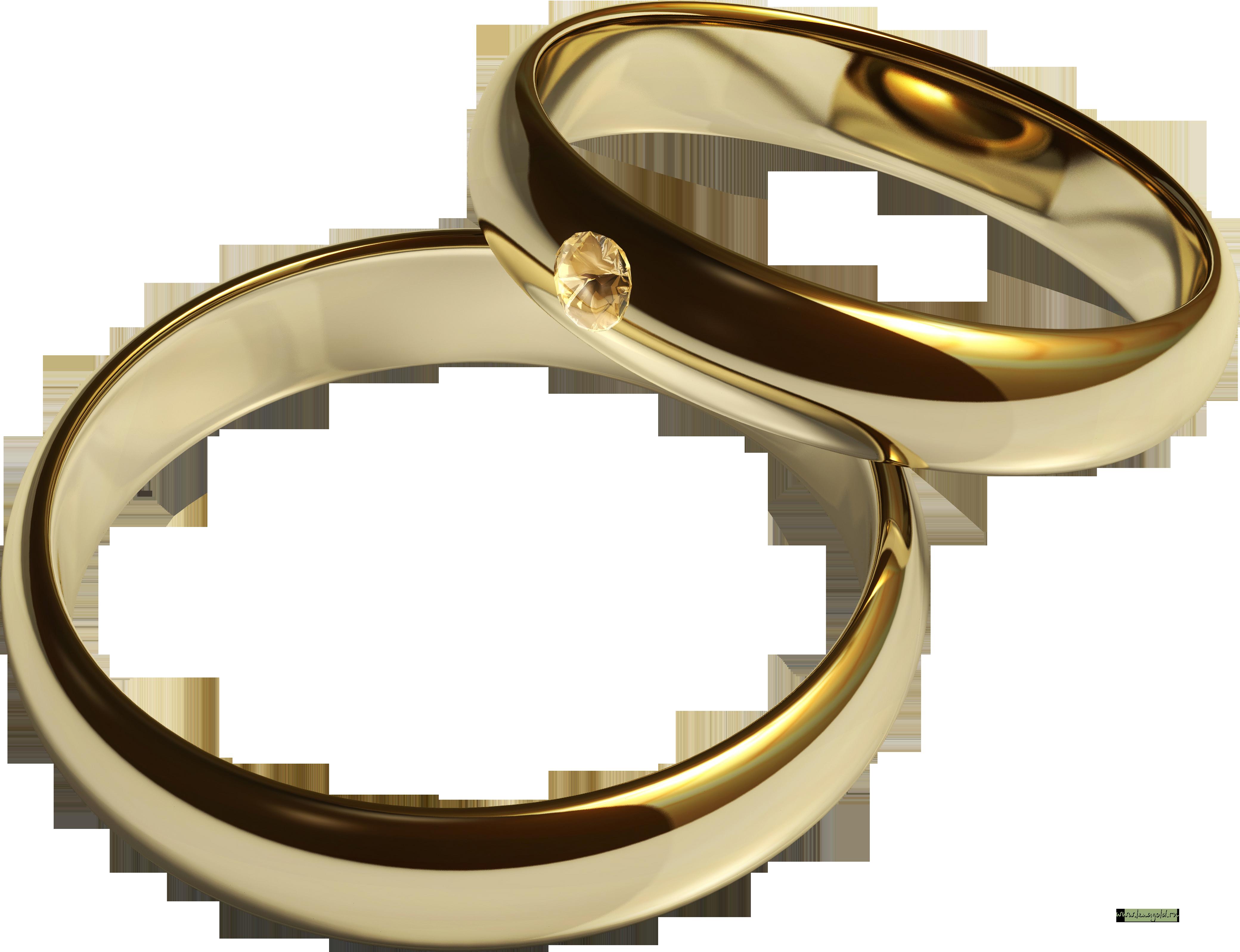 обручальные кольца клипарт:
