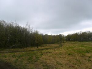 Дорога, в лесах у Семашхо ... SAM_6828.JPG