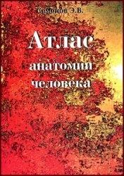 Книга Атлас анатомии человека. Том 1