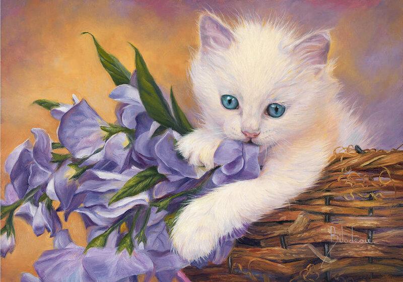 Открытки красивые коты, прикольные ржачные