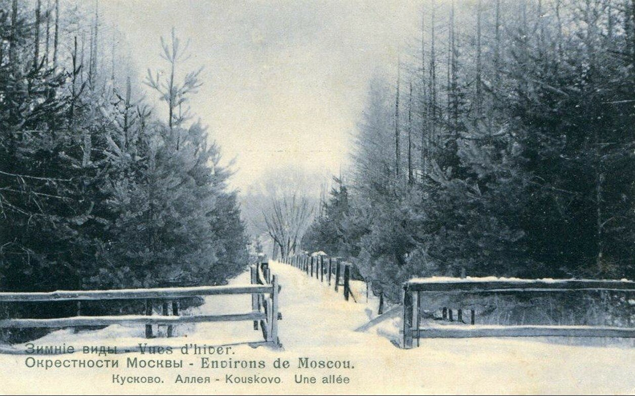 Окрестности Москвы. Кусково. Аллея