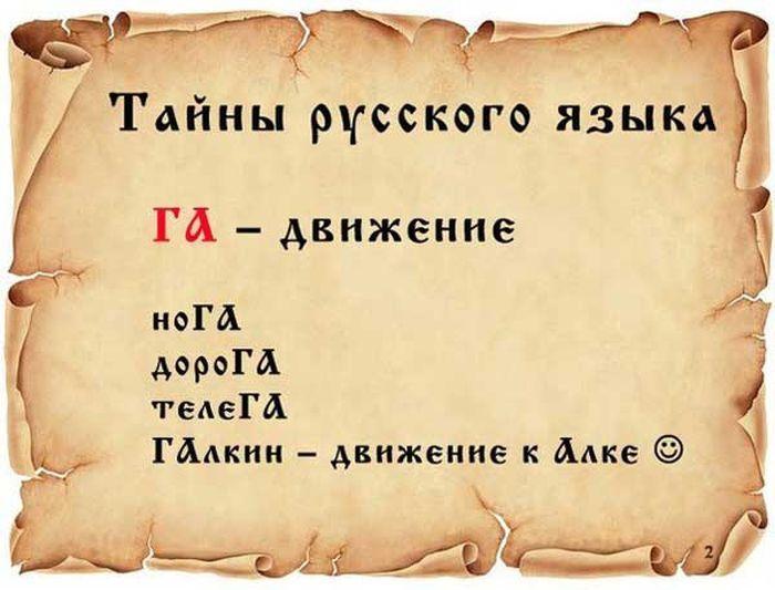 1370278579_tayny-russkogo-yazyka005.jpg