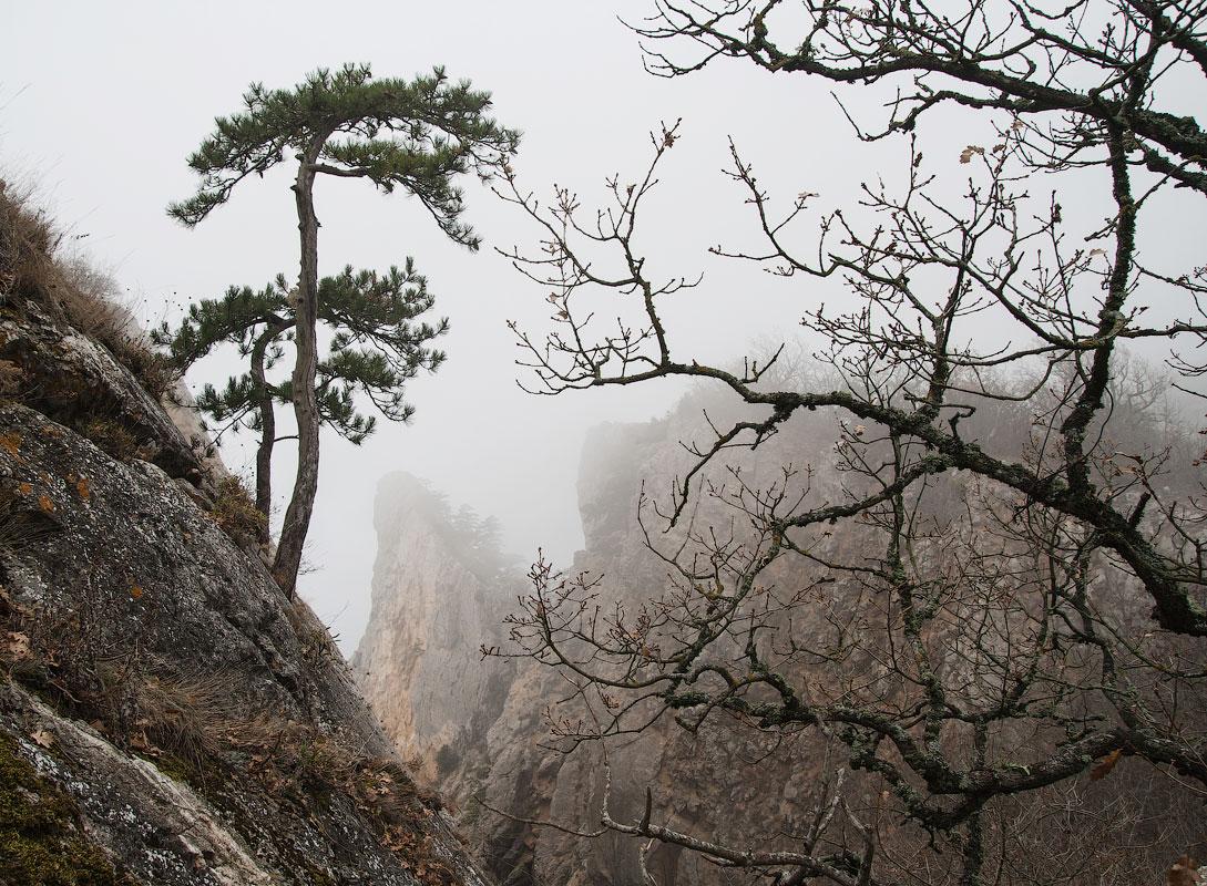 Туманный поход в Балаклаву