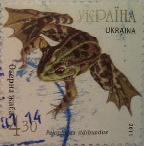 2011 N1140-1144 (b93) блок Фауна Земноводные Жабы озерная жаба 4.30