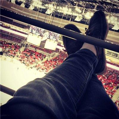 Адепт на хоккее