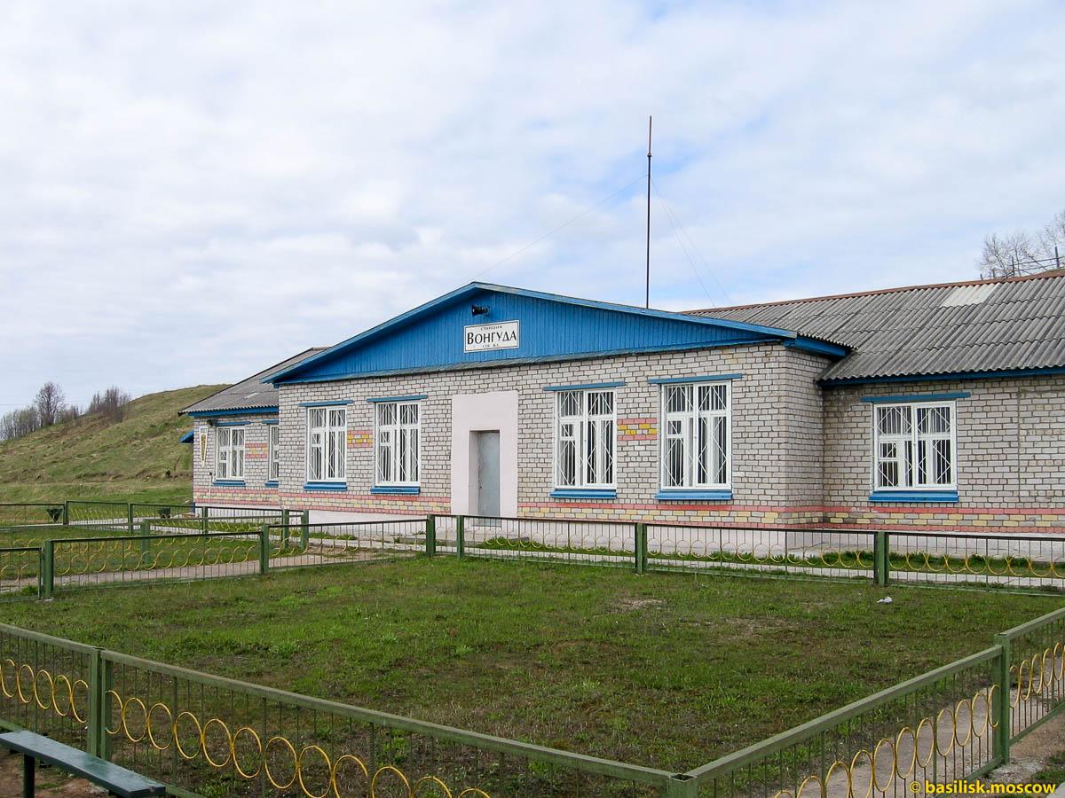 Станция Вонгуда. Архангельская область.