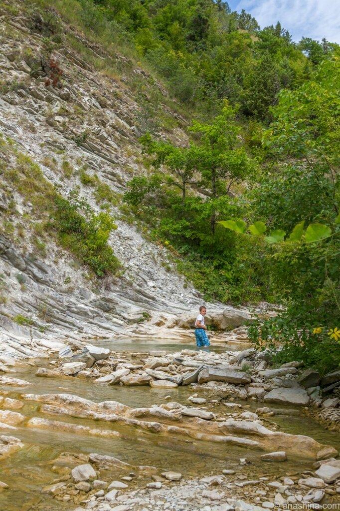 Ущелье, река Ачибс, Кавказ