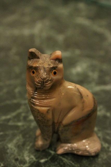 Доминикский кот