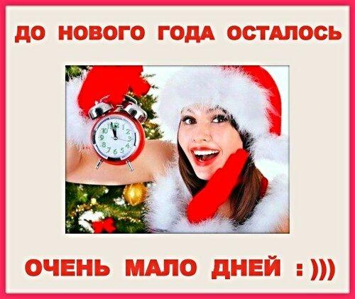 До Нового Года осталось очень мало дней : )))