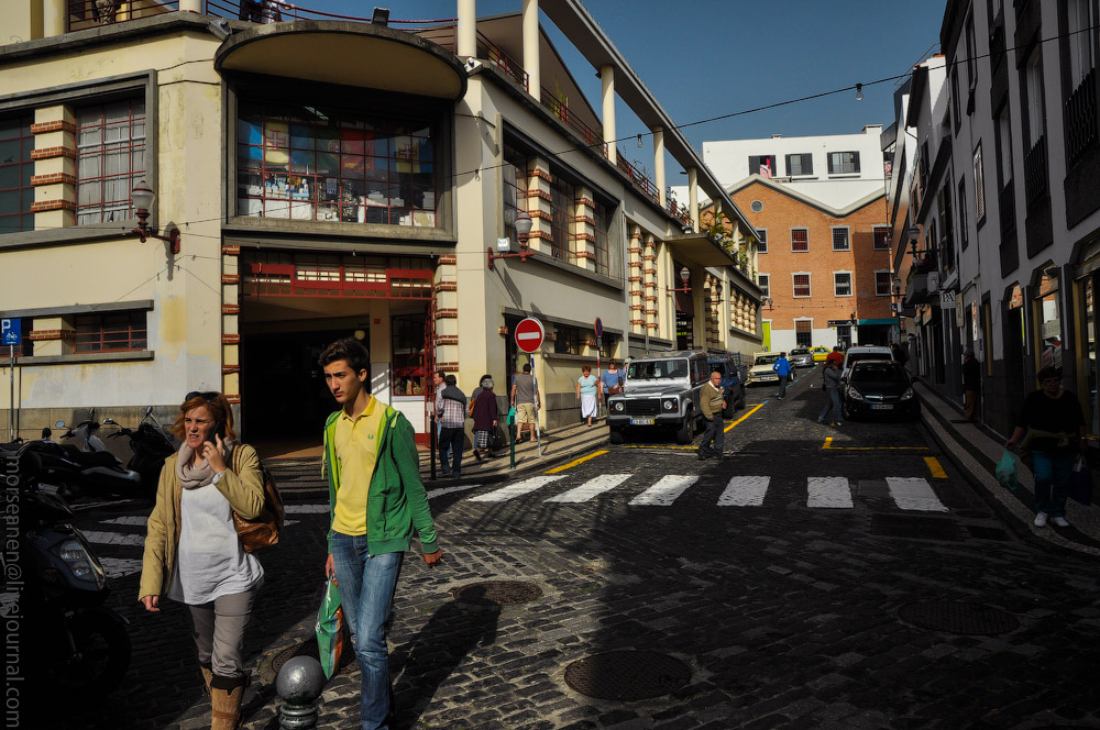 Madeira-(516).jpg