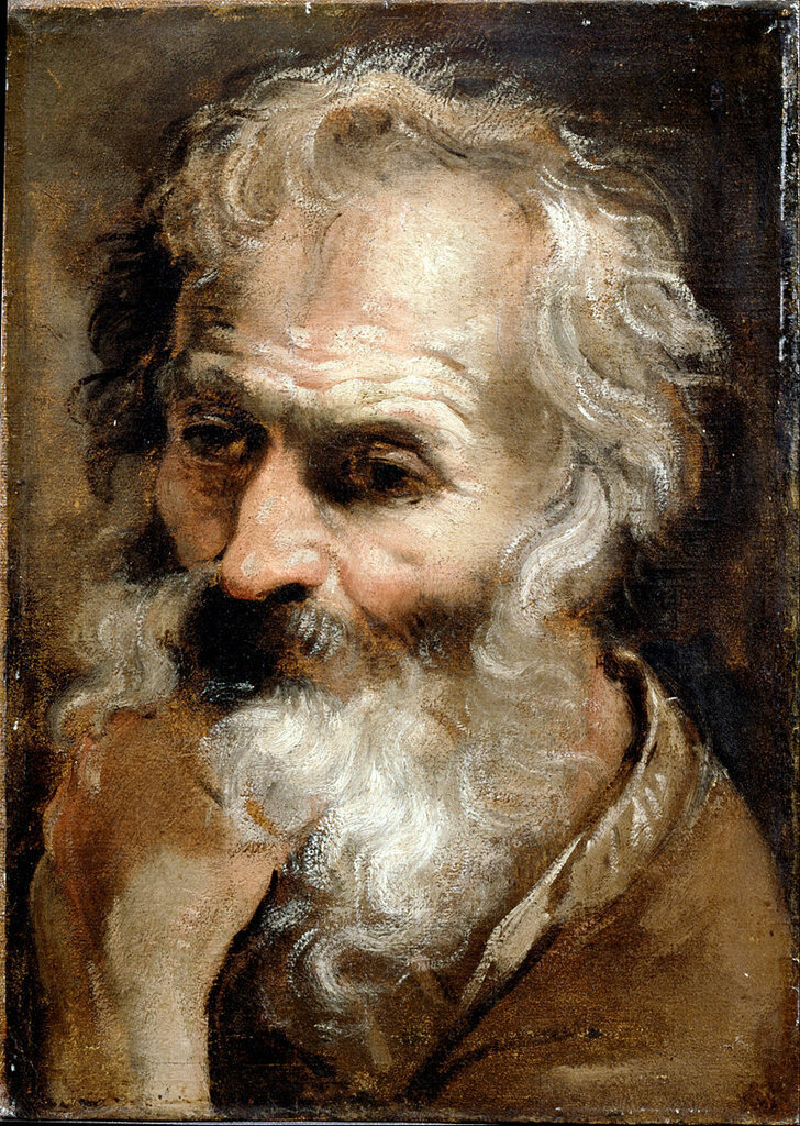 Carracci,_Annibale_-_Head_of_an_Old_Man_-_Google_Art_Projectок. 1590-92.jpg