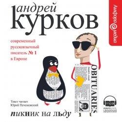 Книга Пикник на льду (Аудиокнига)