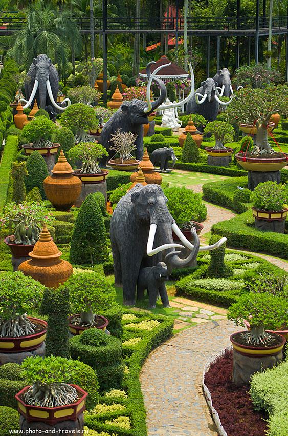 2. Мамонты в ботаническом саду Нонг Нуч
