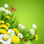 Spring (3) [преобразованный]