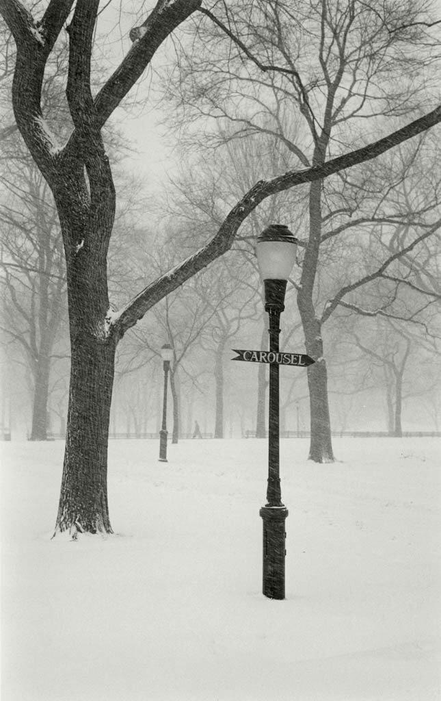 Let it snow, Cynthia Matthews0.jpg