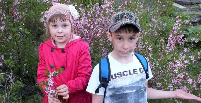 Аня, Андрей и миндаль