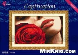 Журнал DOME 110704 Captivation