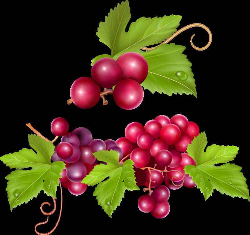 фрукты и ягоды (18).png