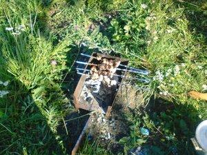 Отдых и шашлыки на озере Ильмень в Новгородской области