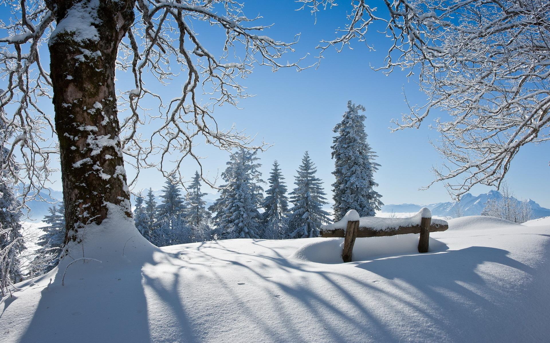 зима красивый пейзаж
