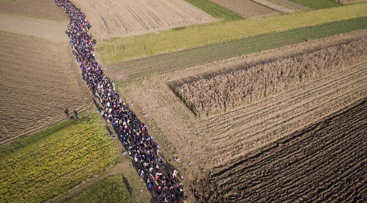 2. Словения, 26 октября 2015. (Фото Jeff J Mitchel):