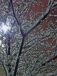 Зима в Солнцево