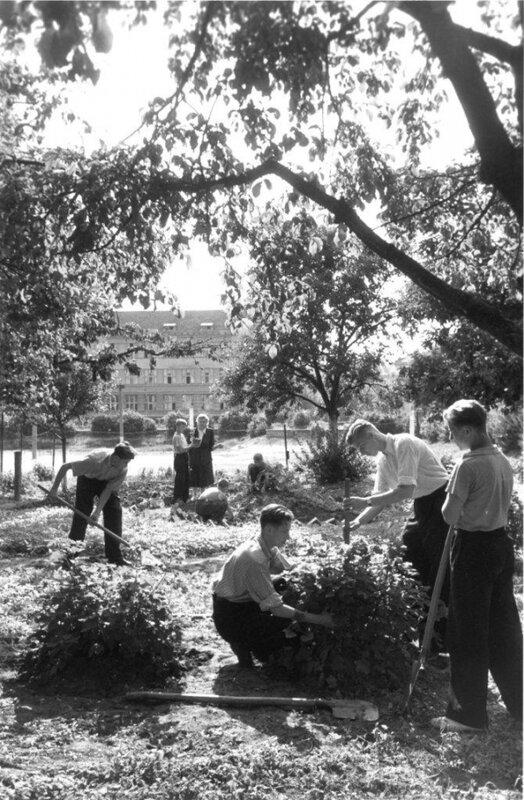 Здесь будет сад. Автор Хорунжий Николай, 1952.jpg