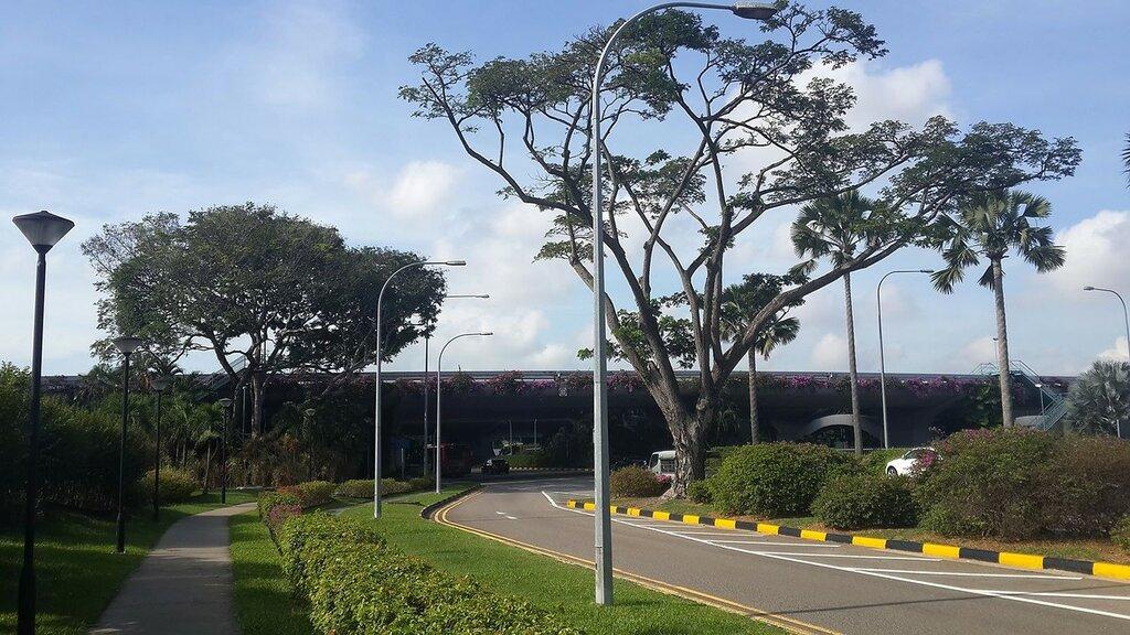 718 Мост возле аэропорта Чанги.jpg