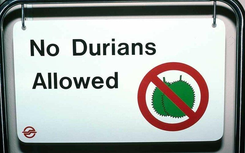 Самые странные законы мира: терпите до утра, сопротивляйтесь инопланетянам и другое
