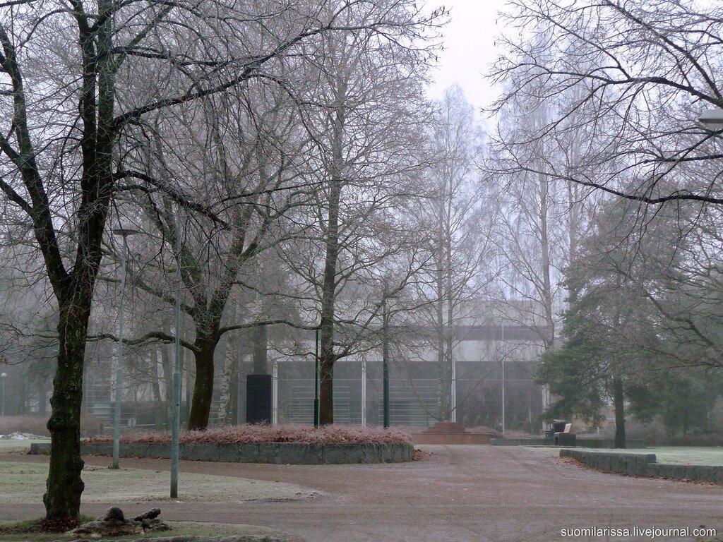 Туманное утро 5 декабря 2014 г.