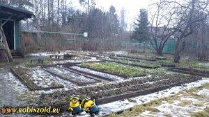 зима по-Питерски