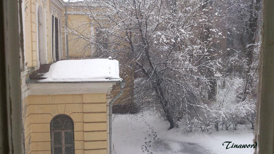 Вид-из-окна-37.jpg